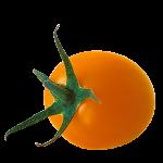 カラートマト オレンジ