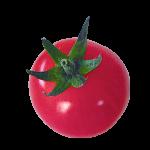 カラートマト ピンク